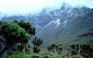 Rwenzori Mountain National Park