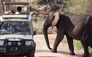 13 Days Uganda Adventure Safari