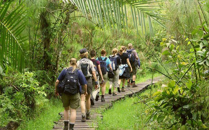 Bigodi swamp walk