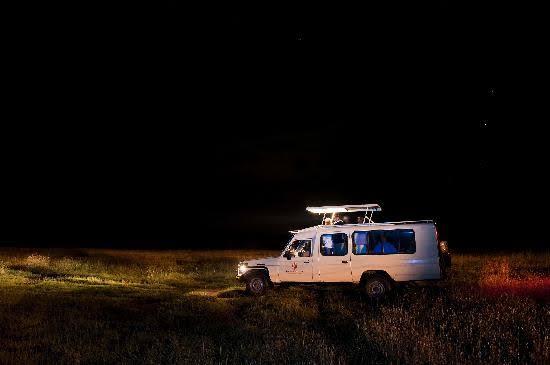 Night game drive in Lake Mburo national park